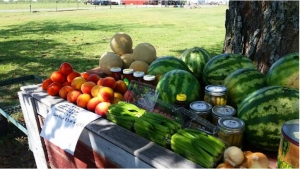 local-farm in Dallas -header