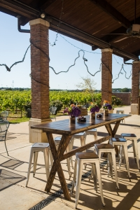 Delaney Vineyards Terrace